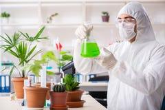Bioteknikkemisten som arbetar i labb royaltyfri bild