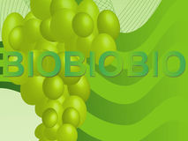 Biotrauben Lizenzfreies Stockfoto