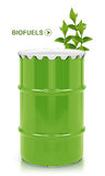 Biotreibstoffgallone Stockbild
