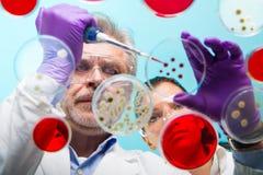 Biowissenschaft Lizenzfreies Stockfoto