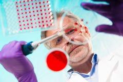 Biowissenschaft Lizenzfreies Stockbild