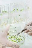 Biowissenschaften Lizenzfreie Stockbilder