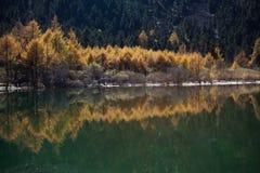 Bipenggou Landschaft Lizenzfreies Stockfoto