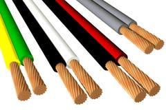 Biphasic кабели (3D) Стоковое Изображение RF