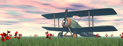 Biplane on the grass - 3D render Stock Photos