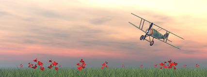 Biplane on the grass - 3D render Stock Photography