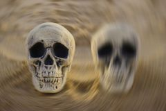 Bipolar disorder concept: two skulls on sand stock photos
