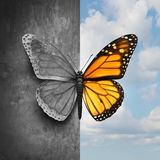 Bipolar Mental Disorder. Abstract psychological illness concept as a butterfly divided as one side in grey and sad colors with the other in full bright tones as Royalty Free Stock Image