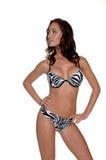 Biquini da listra da zebra Imagem de Stock Royalty Free