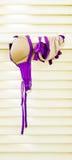 Biquini de secagem Fotografia de Stock