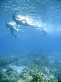 Biquini que snorkeling Foto de Stock