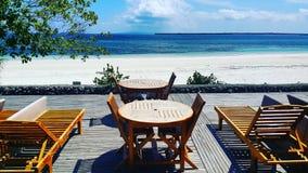 Bira strand Fotografering för Bildbyråer
