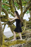 Biracial teen girl climbing on sprawling branches at Hawaiian be. Beautiful biracial teen girl in black sundress and bare feet climbing on sprawling branches on stock image