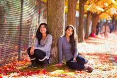 Biracial teen girl sitting under colorful maple trees in autumn Stock Photo