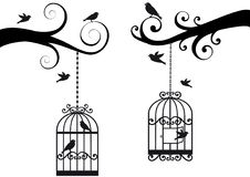 Bircage and birds,  Royalty Free Stock Photo