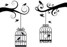 Bircage et oiseaux,   Photo libre de droits