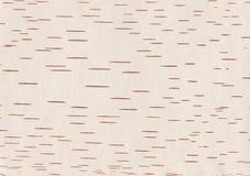 Free Birch Bark Stock Image - 14817031