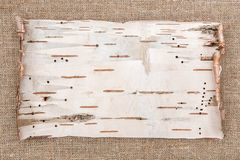 Birch bark on burlap background Royalty Free Stock Photography