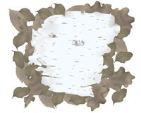 Birch bark. Laying on fallen leaves in the forest vector illustration