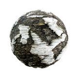 Birch bark sphere. 3D render of sphere with birch bark surface on white royalty free illustration