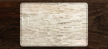Birch bark texture background perforated edge royalty free stock images