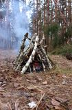Birch bonefire with smoke in pine trees forest in autumn. Smoke from fireplace in touristic camp. Hiking holidays. stock photos