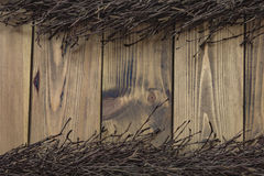 Birch bough on wooden background Stock Photos