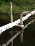 Birch bridge. Bridge made of birch Royalty Free Stock Photo