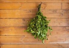 Birch broom hangs in a bath Stock Images