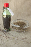 Birch buds and medicinal tincture made from them Stock Image