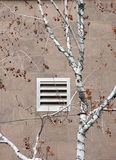 Birch and building vent in Gaslamp quarter Royalty Free Stock Photo