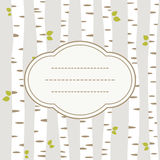 Birch card Royalty Free Stock Image