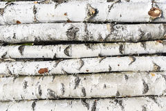 Birch fire wood Royalty Free Stock Image