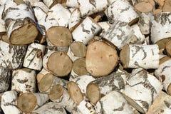 Birch firewood Stock Image