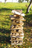 Birch firewood loaded stack Organic fuel fireplace Stock Photos
