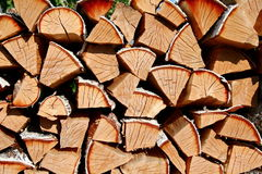 Birch firewood Royalty Free Stock Images