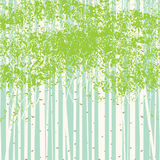 Birch grove vector background against the blue sky Royalty Free Stock Photography