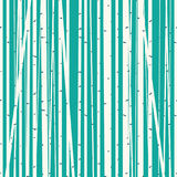 Birch grove vector background against the blue sky Royalty Free Stock Image