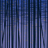 Birch grove vector background against the dark sky Stock Images
