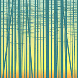 Birch grove vector background against the sky Royalty Free Stock Images