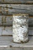 Birch log Stock Photography