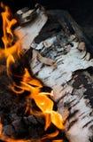 Birch log burning Royalty Free Stock Images