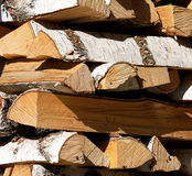 Birch log. Royalty Free Stock Photo