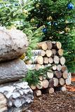 Birch logs and Christmas tree Stock Photo
