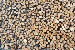 Birch logs on the logging. The universal abstract composition for the background stock photography