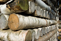 Birch logs stack. Walls of Birch Pavilion in Gatchina, Russia Royalty Free Stock Photo