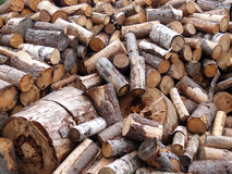 Birch and pine firewood is heaped Stock Photography
