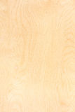 Birch Plywood Pattern Stock Image