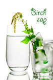 Birch sap. A glass of birch sap. Fresh, clean look. Birch juice in elegant highball glass decorated with tiny birch branch with leaves standing in the frosted Stock Image