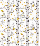 Birch tree autmn. seamless pattern. Birch tree.seamless pattern.vector.fabricDesign element for wallpapers, web site background, baby shower invitation, birthday Stock Images